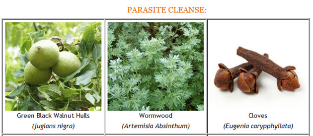 Parasite-Cleanse-Pic